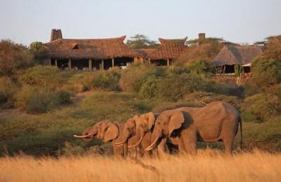 Κένυα Μασάι Μάρα Ναιρόμπι ταξίδι